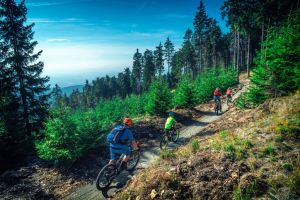 Guide to Czech trail centers and bike parks